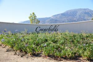 Der Wein-Shop Südafrika zeigt hier den Eingangsbereich vom Weingut Cranefields